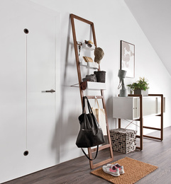 Ladder for organizers
